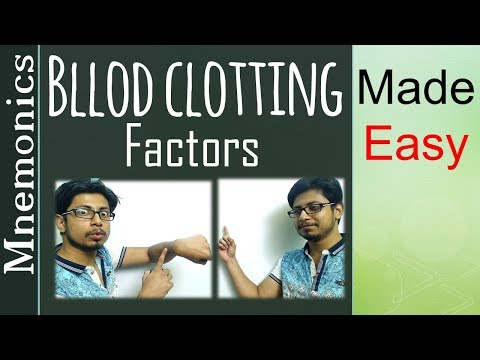 Memorize Blood clotting factors and their functions