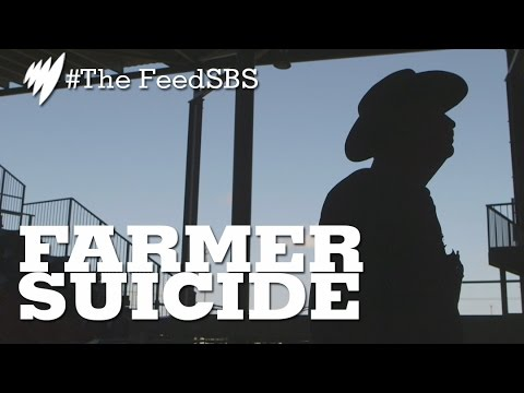 Farmer Suicide In Queensland I The Feed
