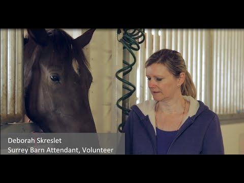 BC SPCA volunteer video Mp3