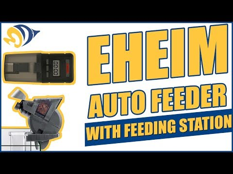 Eheim Auto Feeder with Feeding Station: What YOU Need to Know
