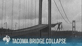 Tacoma Bridge Collapse thumbnail