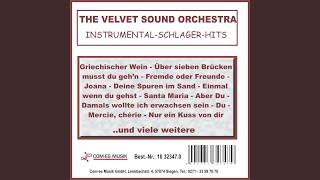 Gambar cover Deine Spuren im Sand (Instrumental)