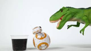 bb 8 and the t rex