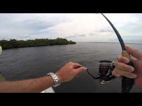 04 17 15 PINEISLAND SNOOK FISHING WITH BOB WEIKERT