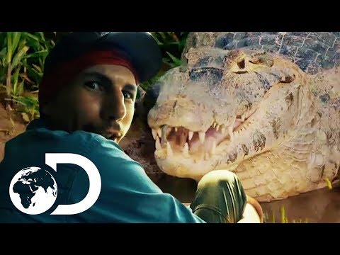 Parker Finds Himself In Caiman Infested Waters | Gold Rush: Parker's Trail