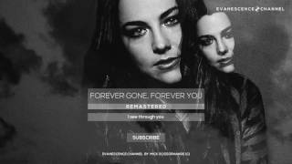 Watch Evanescence Forever Gone Forever You video