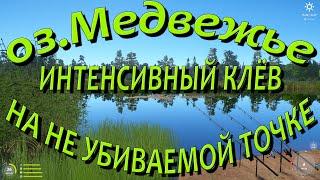 Русская рыбалка 4 озеро Медвежье Фарм серебра Карп амур