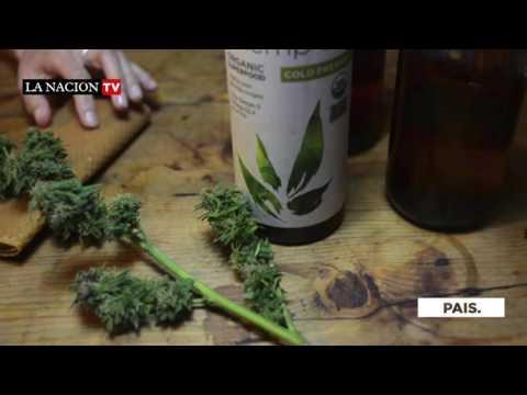 Paraguay produce marihuana, pero debe importar su aceite