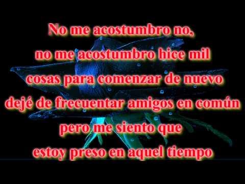 No me acostumbro-Rey Ruiz