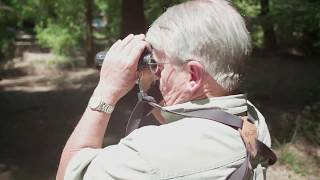 My Redwoods Legacy: Michael Mecham