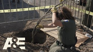 Live Rescue: Skunk STUCK in a Hole (Season 3) | A&E