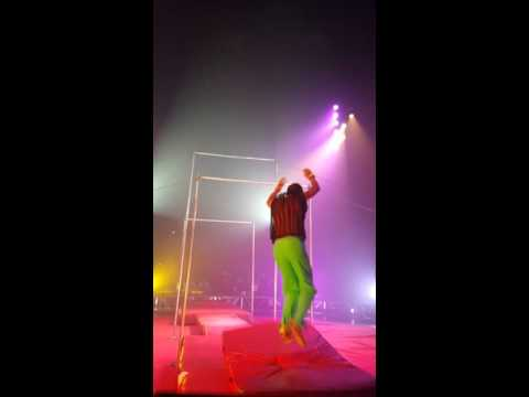 Circus Vargas  (high bars)