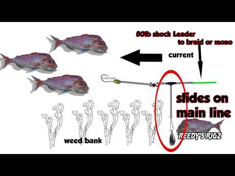 Fishing Rigs How To Tie: Running ( Advanced Sliding Rig ) Bait Fast Current Not For Land-based