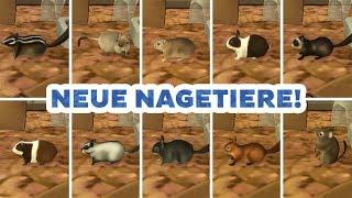 Neue Nagetiere für Die Sims 4 | Modvorstellung | sims-blog.de