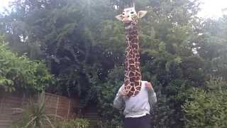 For all the lonely giraffes out there
