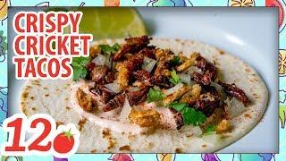 How to Make: Crispy Cricket Tacos