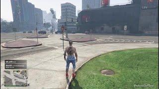 Grand Theft Auto free mode