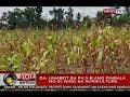 SONA: World Bank: El Niño phenomenon, posibleng may epekto sa paglago ng ekonomiya
