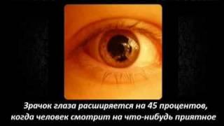 Интересные Факты 10 (заключительная)(Мой Твиттер http://twitter.com/kostya_zzz Dsfilm http://www.youtube.com/user/1988kazah LizzzTV http://www.youtube.com/user/LizzzTV . JOIN QUIZGROUP ..., 2011-08-17T08:37:07.000Z)