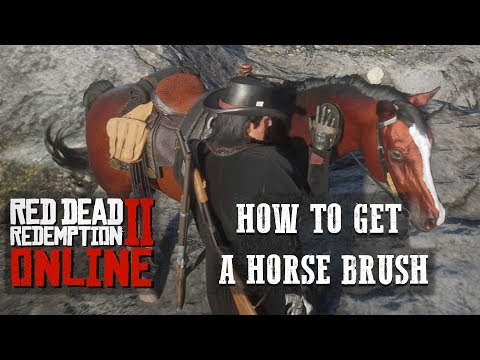 RED DEAD ONLINE - HOW TO BRUSH YOUR HORSE!! AND KEEP IT CLEAN!!