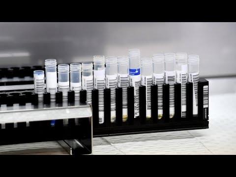 Aust Factory Tests Coronavirus Vaccine