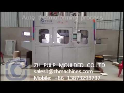Full automatic wood pulp bagasse sugarcane pulp thermoforming tableware  machine