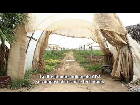 Plaidoyer pour l'émancipation des Groupements de développement agricole (GDA) en Tunisie