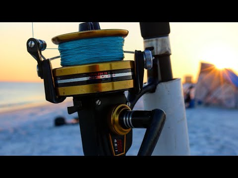 The TRUTH About Surf Fishing!  (Part 2)