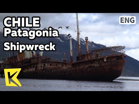 【K】Chile Travel-Patagonia[칠레 여행-파타고니아]비글해협의 새둥지, 난파선/Shipwreck/Beagle Channel