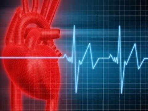 Скачать Вкусное лекарство для сердца, ума и суставов