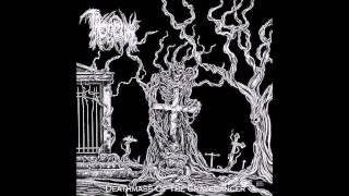 Throneum - Baptism of Fire
