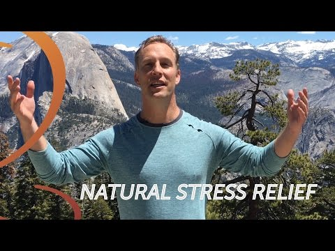 Trembling Meditation The Brand New Method to Relieve Stress