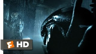 AVP: Alien vs. Predator (2004) - Alien vs. Predator Scene (2/5) | Movieclips