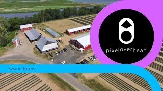 Swann Farms - Aerial View