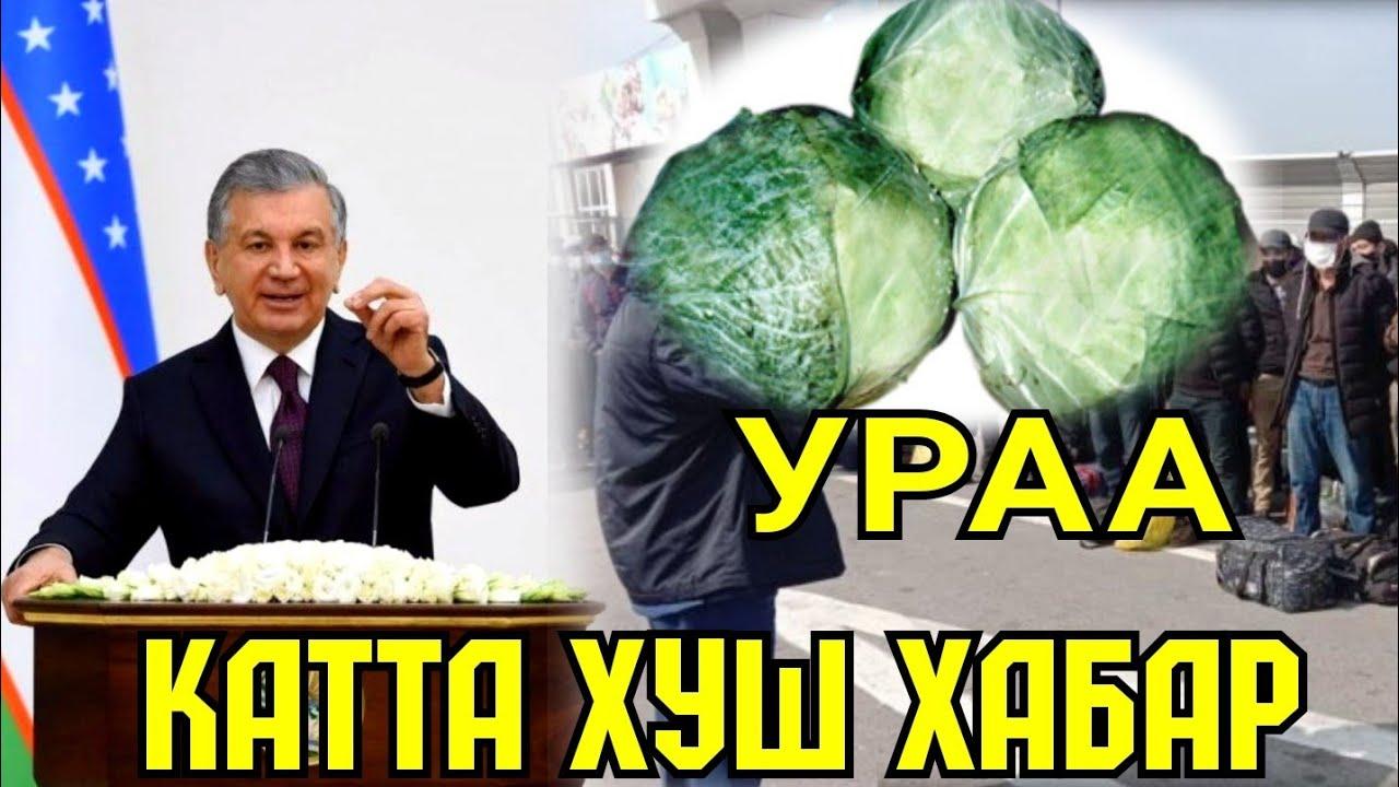 ТЕЗКОР ВИРУСГА ДАВО УЗИМИЗДА ТОПИЛДИ  ХУШ ХАБАР MyTub.uz