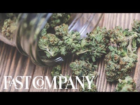 MedMen is making marijuana mainstream   Changing The Game
