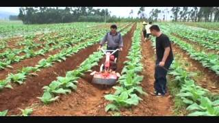 Repeat youtube video Nichino 日農牌 Power tiller / Cultivator / Hand tractor 中耕管理機 (850S)-4