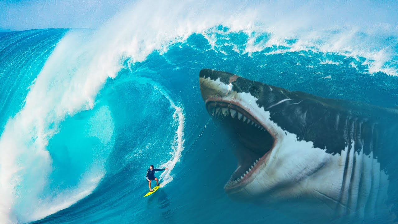 what if megalodon sharks didn t go extinct youtube