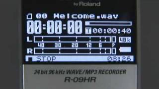 R-09HR Recorder (4/8) Playback Options