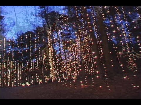 Callaway Gardens Christmas.Christmas Fun Ideas Callaway Gardens Fantasy In Lights