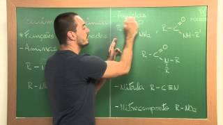 Química Orgânica - Aula 05 - Parte 2: Funções Nitrogenadas