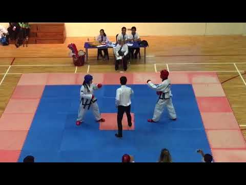2017 State Free Sparring (LMTC)