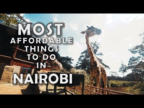 TOP 10 AFFORDABLE Things to DO in Nairobi!