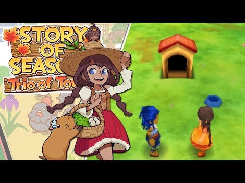 Our First Proper Pet House!! 🍂 Story of Seasons: Trio of Towns - Episode #23