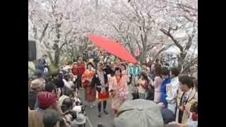 満開の桜の中を進む豪華な姫様たちの行列(平成19年4月)