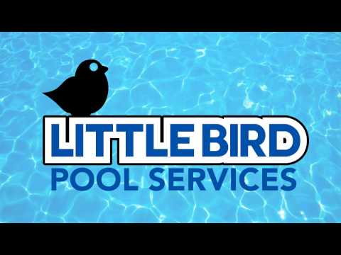 Pool Maintenance Cost in Youngstown