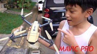 My Mavic Pro DRONE experience