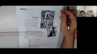 Publication Date: 2021-06-29   Video Title: Hachiko #豐富詞彙結構 #學生有 聖約瑟 英華 聖保