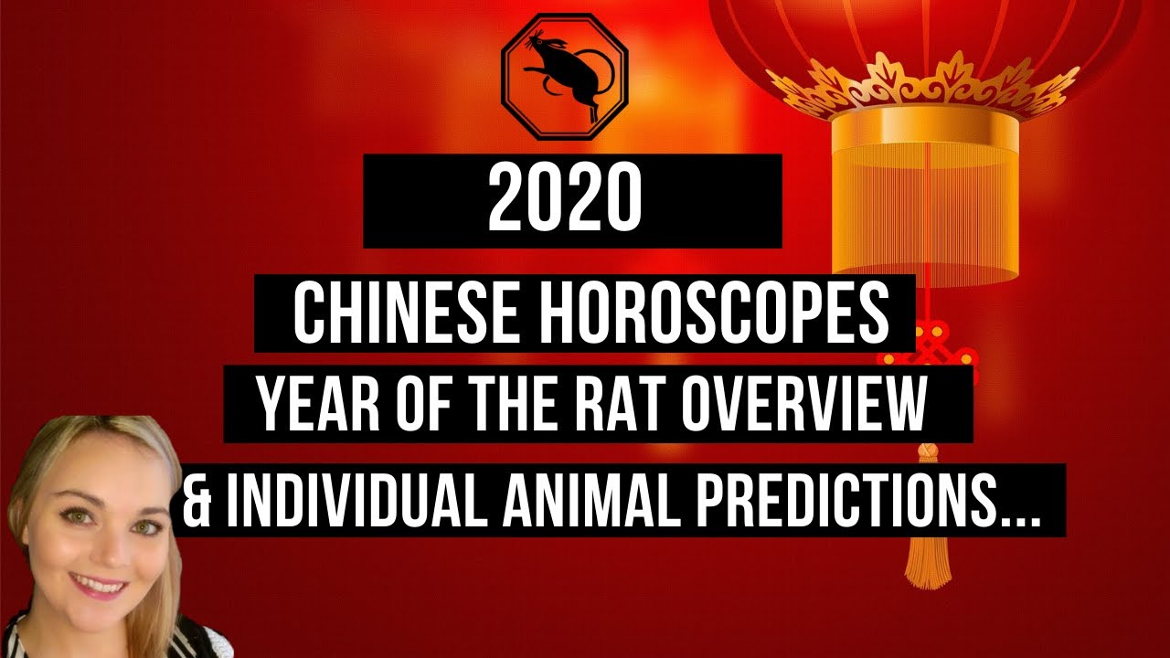 Chinese Horoscopes 2020 Year Of The Rat Overview Individual Animal Predictions Youtube Read your free daily chinese horoscopes, all original by astrologer yang taitai ! chinese horoscopes 2020 year of the
