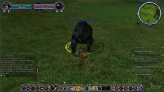 The Lord of the Rings Online: Shadows of Angmar PC Games
